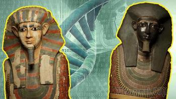 10 открытий, которые были сделаны благодаря анализу древних ДНК