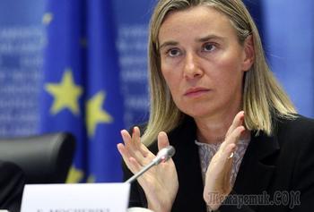 «Может быть провокацией»: Москва ответила Вене на обвинения