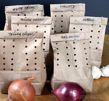 14 маленьких хитростей, которые помогут дольше сохранить овощи и фрукты свежими