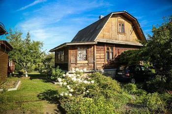 Дача: вечнозеленый рай