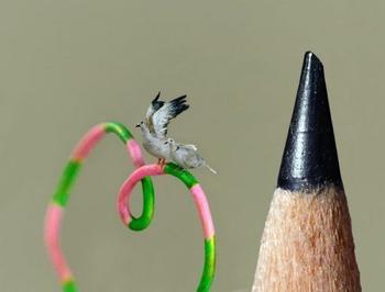 Реалистичные птички, которые меньше кончика карандаша