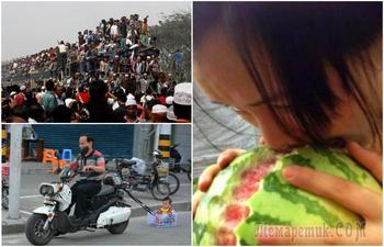 Позитивные фотографии, которые позволят взглянуть на жителей Азии под другим углом