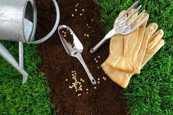 Как сделать хороший газон