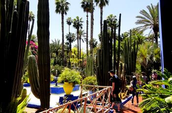 Марокко. Сады Марракеша.