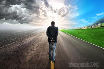 37 наблюдений о жизни, которая пошла не по плану