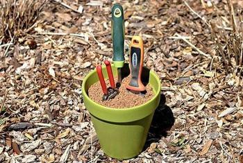 Бюджетные советы по обустройству дачного участка и уходу за растениями