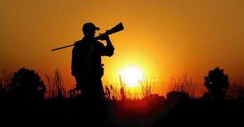 Как получить разрешение на добычу охотничьих ресурсов?