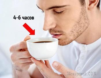 10 неожиданных вещей, которые будет интересно узнать каждому кофеману