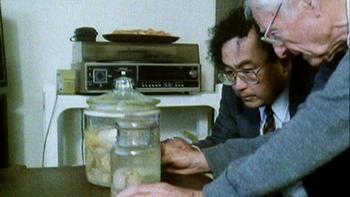 Что случилось с мозгом Эйнштейна после смерти учёного