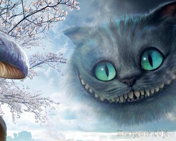 Парадокс кошки с маслом, алгоритм Фюрера и все-все-все