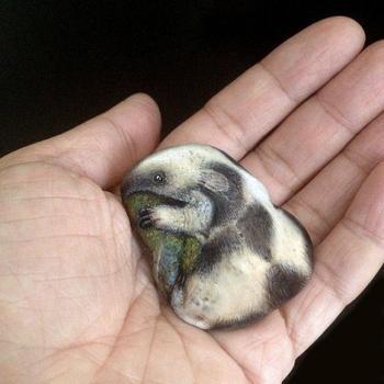 Миниатюрные животные на камнях