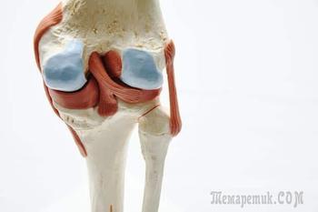 Разрыв мениска коленного сустава – лечение и реабилитация