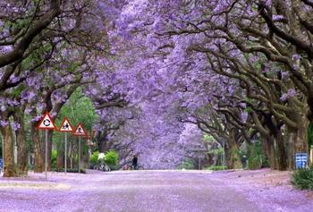 Самые красивые парки мира