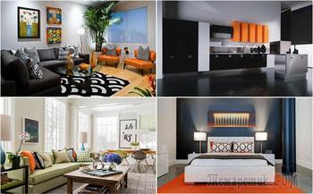 Оранжевый и черный – удивительная палитра осени