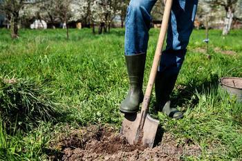Чем полезна безотвальная обработка почвы