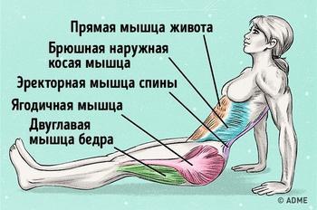 Всего одно упражнение, чтобы сжечь жир и исправить осанку
