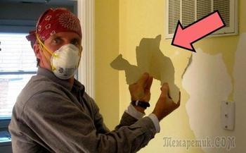 10 тонкостей покраски для ремонта, подсмотренных у профессионального маляра