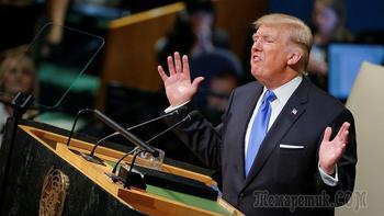 «Трамп, ты клоун, и ты уволен»