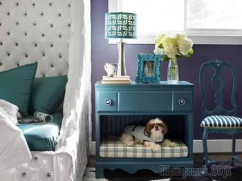 Обустройство места для животного в квартире
