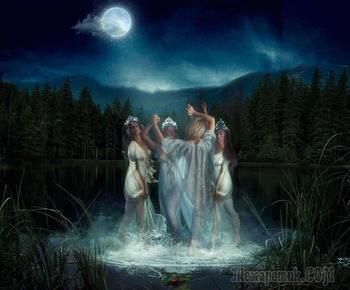 В вечернем лесу (Стих)