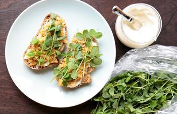 20 блюд для здорового питания, которые можно сделать за 20 минут