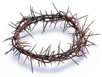Терновый венец Иисуса Христа: значение в христианстве