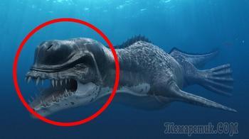Самые жуткие чудовища из океанских глубин
