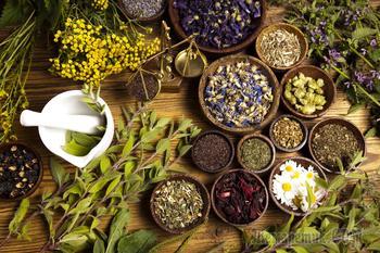 7 лекарственных трав от кашля и бронхита