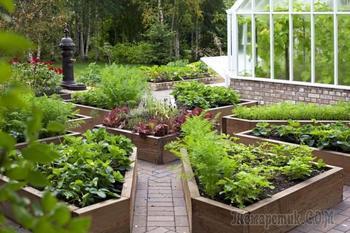 Как украсить огород своими руками: креативное оформление и разбивка на зоны