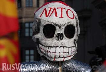 Фашисты и НАТО — одно и то же?