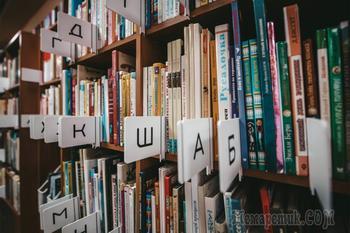 Россиянам дали миллиард рублей на новые библиотеки
