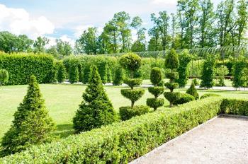 47 приемов для малоуходного сада от ландшафтного дизайнера