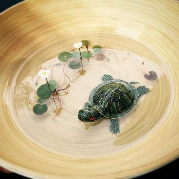 Реалистичные 3D-рисунки от Кенга Лая