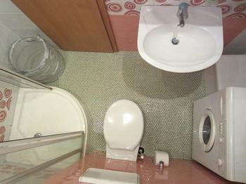 Ванная: оборудовать санузел помогли друзья из Германии