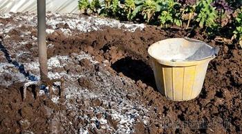 Как и зачем проводят известкование почвы на грядках и в саду