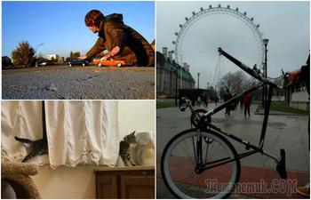 17 забавных фотографий, ракурс в которых решает все