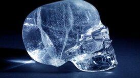 Ученые увидели «золотое сечение» в человеческом черепе
