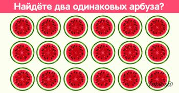 Сможете ли вы найти два одинаковых арбуза?