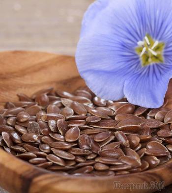 Все о семенах льна: польза, питательная ценность и противопоказания