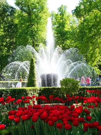Ботанические сады России: список, обзор, описание