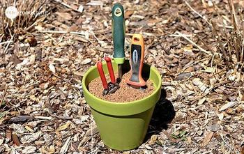 Простые хитрости, которые должен знать каждый садовод