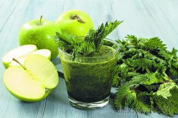 Крапивы полезные свойства — применение крапивы и рецепты из крапивы