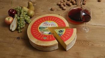 Самый дорогой в мире сыр — ТОП-5