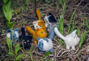Неугомонные коты, или Валяем симпатичного маленького котика и его друзей