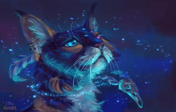 Коты и мистика. 7 интересных фактов о кошках