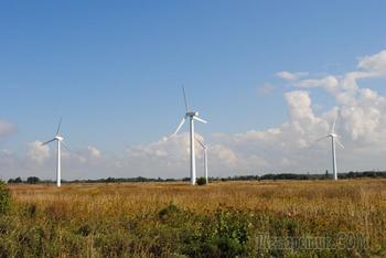 «Россети» ввели в эксплуатацию ветропарк в Калининградской области