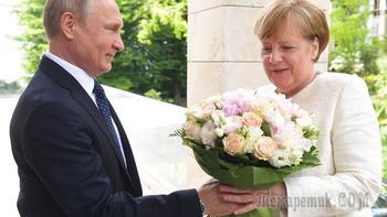 Иран, Украина и газ: до чего договорились Путин и Меркель
