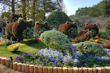 Прикольные скульптуры из кустарника и цветов