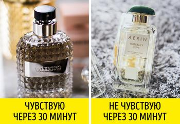 Как за один день понять, что духи вам не подходят, и выбрать идеальный аромат