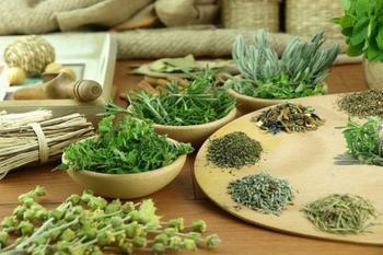 Эффективные жаропонижающие лекарственные растения